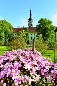 Květen - Olomouc - Klášterní Hradisko Foto Irena Talpová